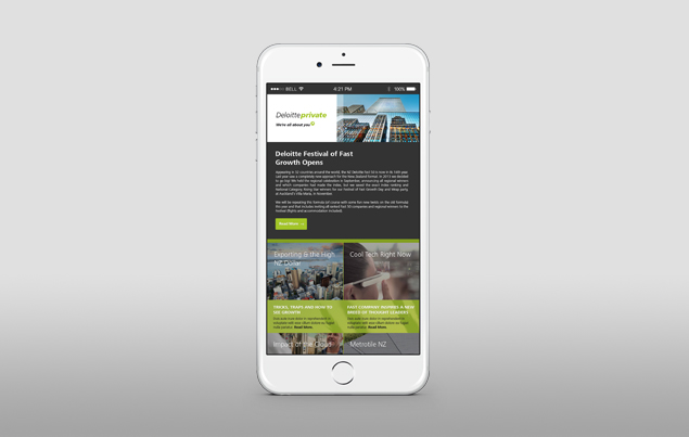 Deloitte Private - Website Work