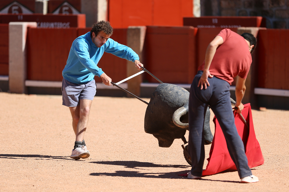 Up-and-coming matador Damian Castaño, 23, practices with his brother and fellow bullfighter Javier at the Plaza de Toros in Salamanca, Spain.