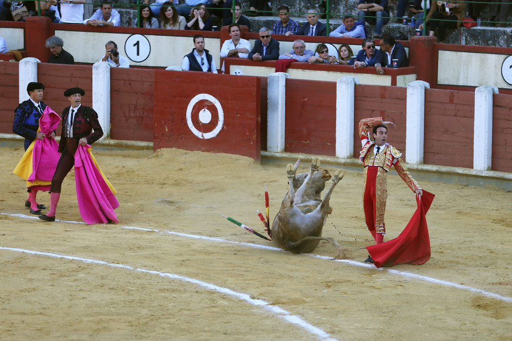 Matador Ponce strikes a pose after delivering the final blow to his second bull at the Saint Peter de Regalado's festival. Impaired by injuries and blood loss, the bull collapses onto his back while charging at Ponce's cape, pushing the banderillas, or spiked batons, further into his muscles.
