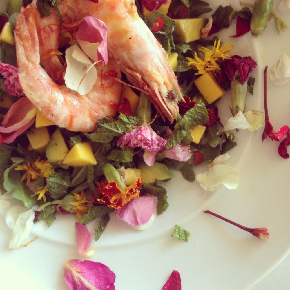 Prawn salad with edible confetti