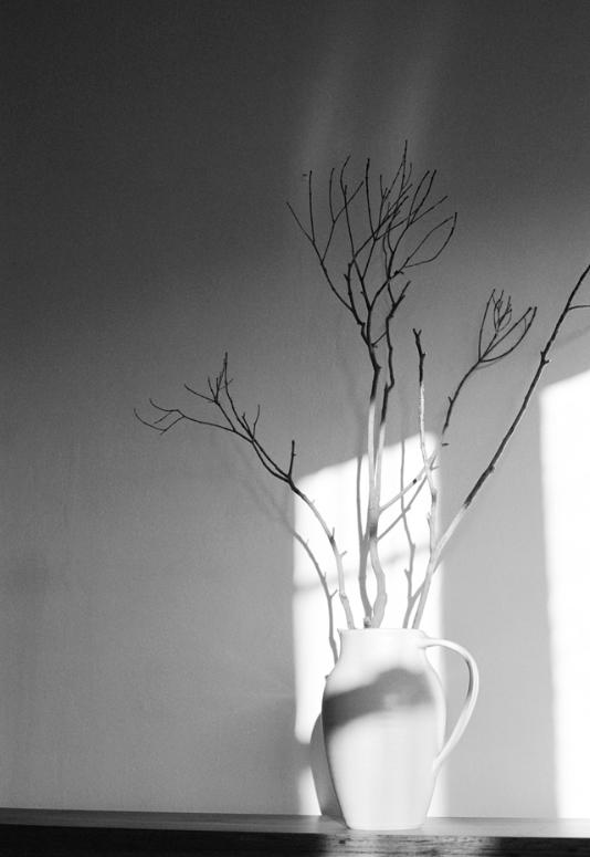 emma j starr analogue photography 35mm ceramic study.jpg