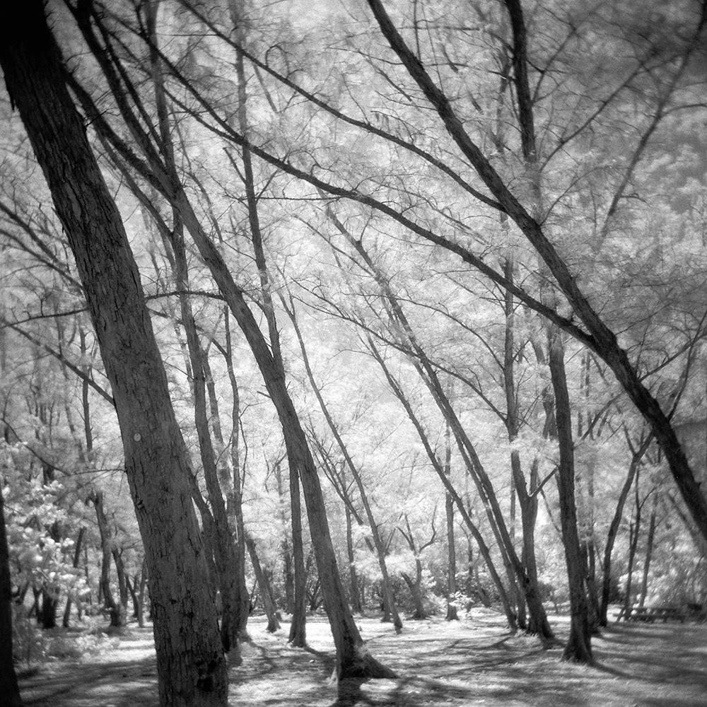 emma j starr infrared film holga analogue photography key west .jpg