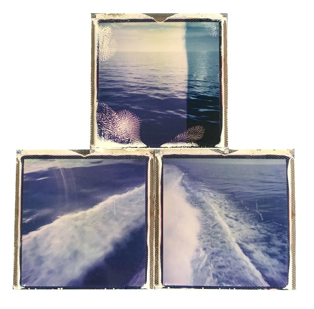 emma j starr analogue photography polaroid collage key west 4.jpg