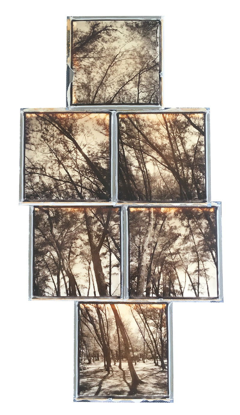 emma j starr analogue photography polaroid collage ft zach.jpg