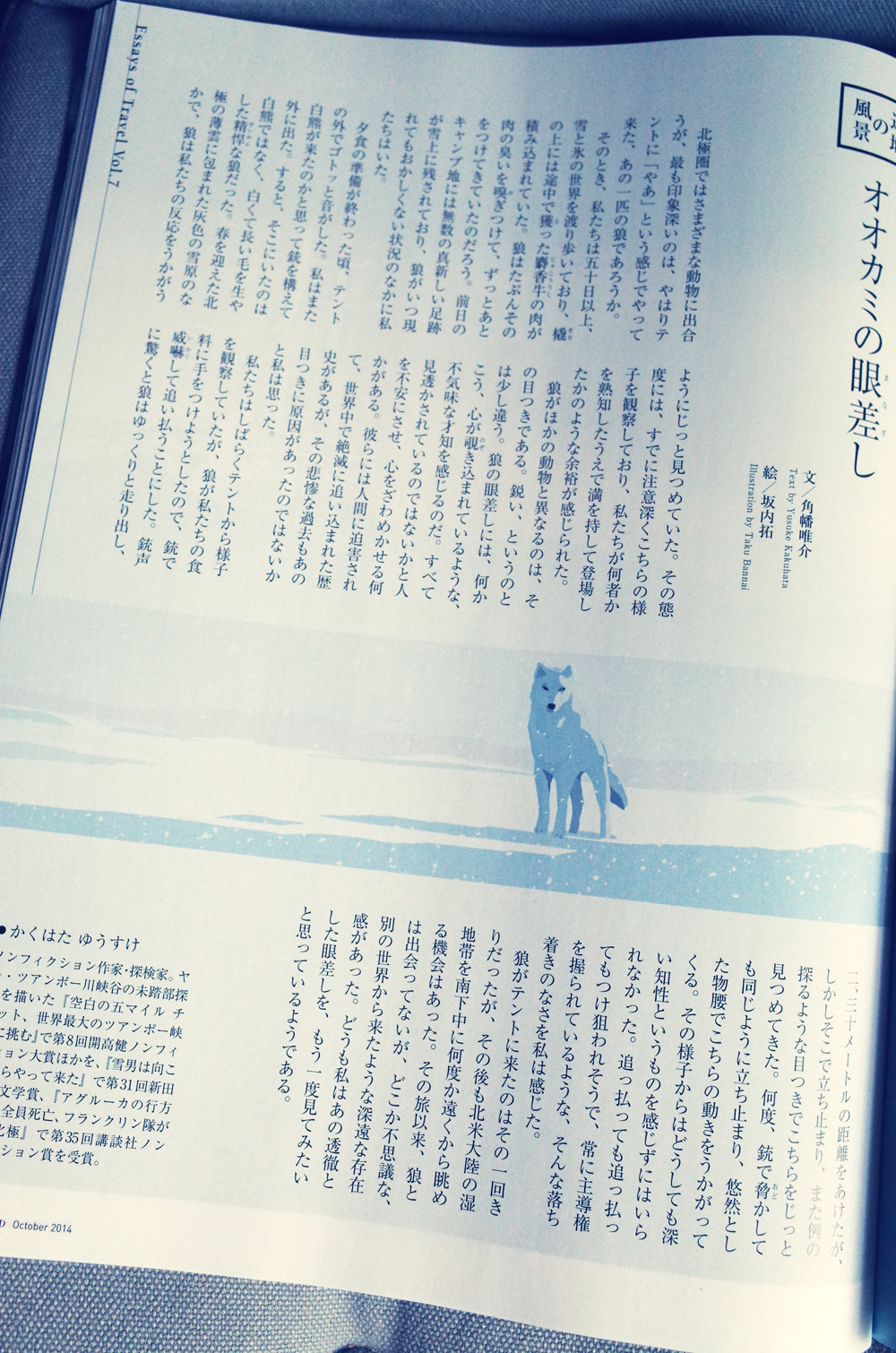JAL「SKYWARD」10月号 辺地の風景。  今回は北極に生きるオオカミを描いています。 北極の白い世界に、白いオオカミ。 白のイメージを邪魔しないような背景や影の配色を模索した1枚です。  角幡さんの文章、オオカミとの距離感がすごく伝わってきて素敵でした。 そんな、クールな雰囲気がうまく伝わるといいのですが。。