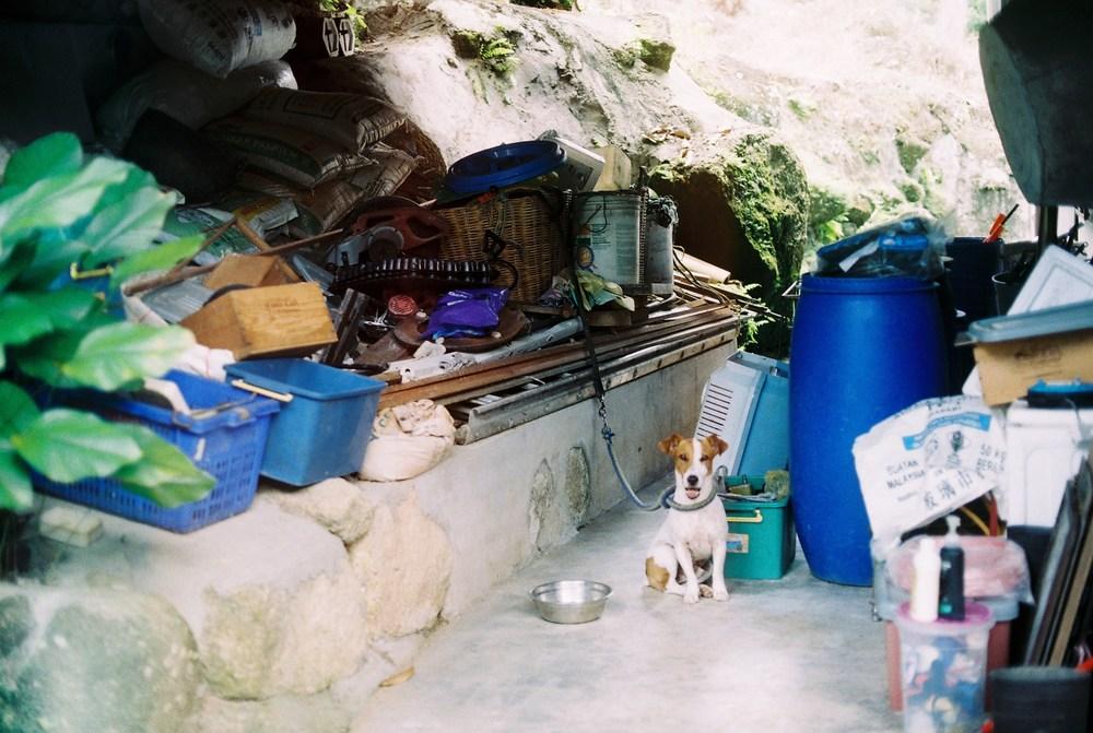 penang-film-photography-04.jpg