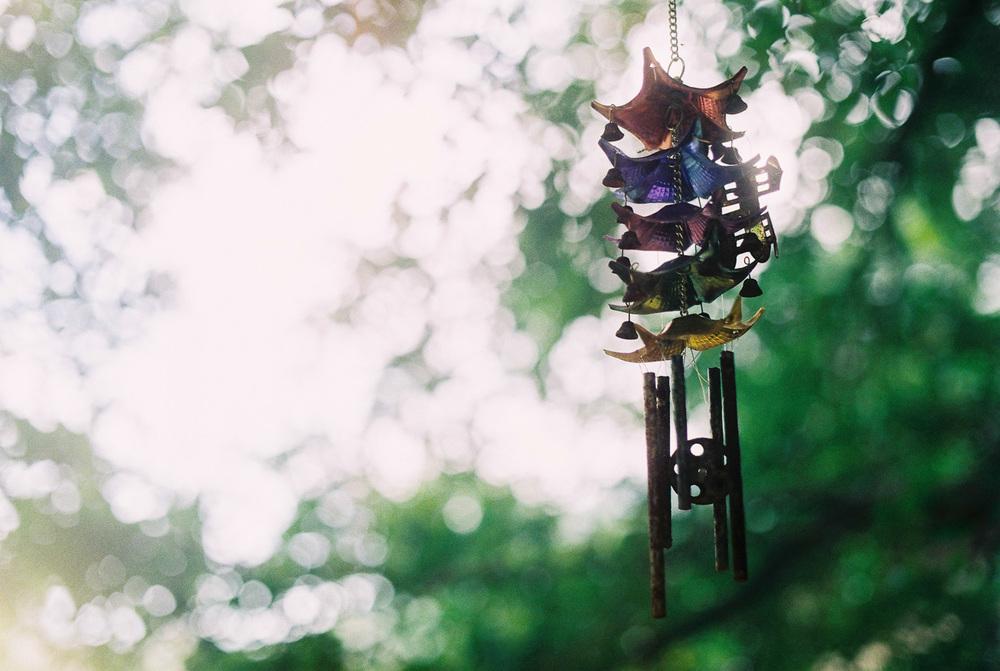 penang-film-photography-7.jpg
