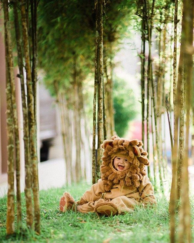 Save the lions. Catch these instead ! #cute #lionking #halloweencostume #cutebaby #babystyle #childphotography #babyphotography