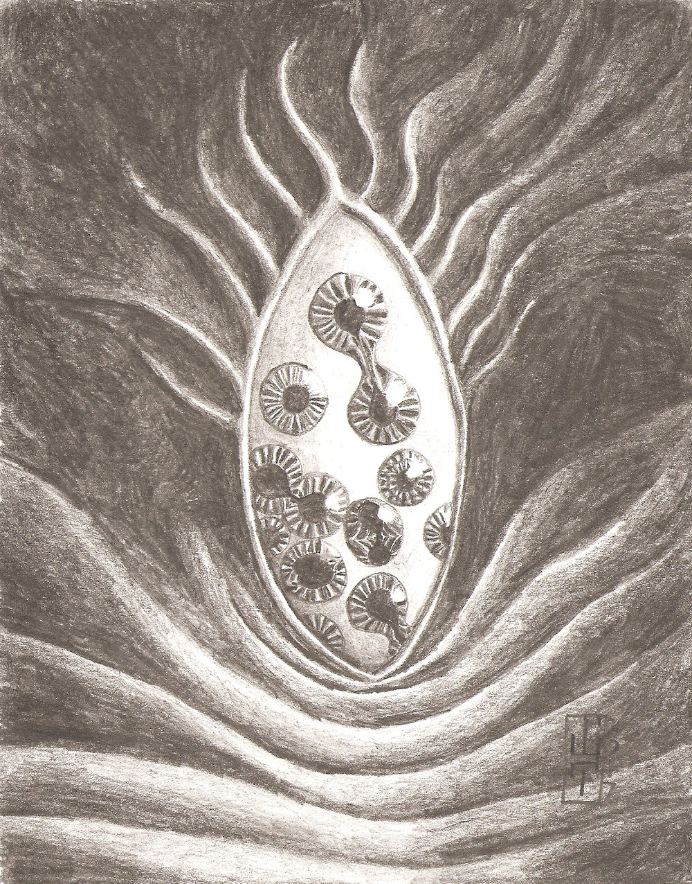 "Antipode, diVision, graphite on watercolor paper, 5x7"", 2017"