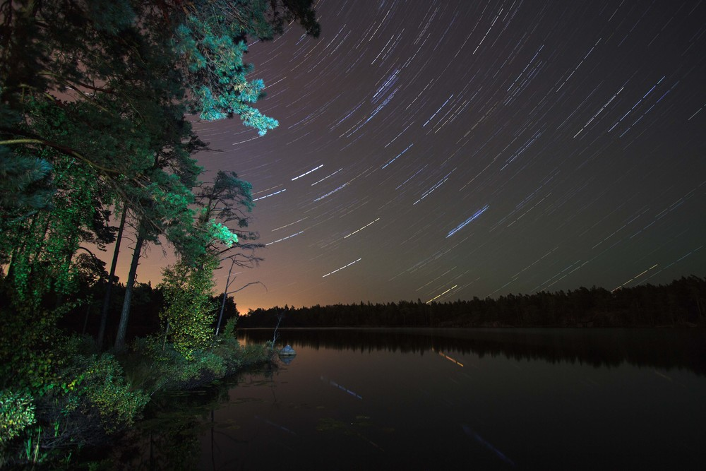 Startrail in Tyresta National Park.