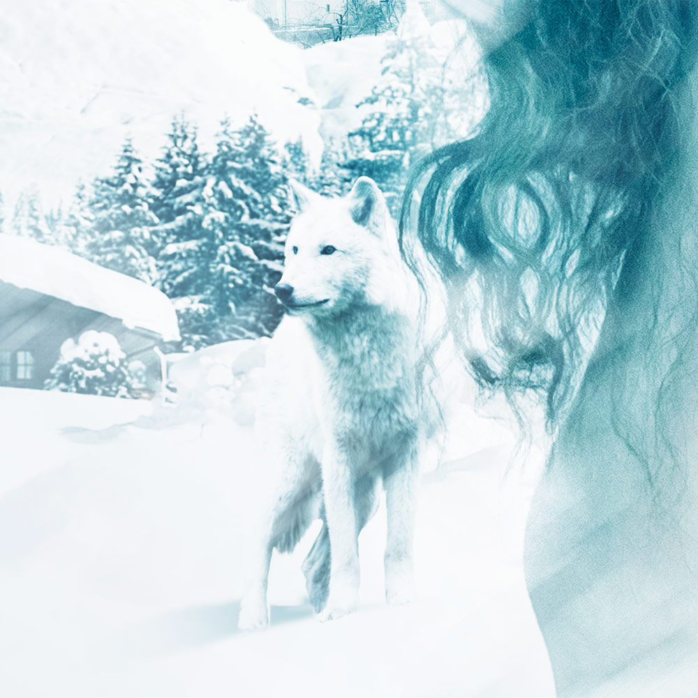 Winterblood_Detail2_1000px.jpg