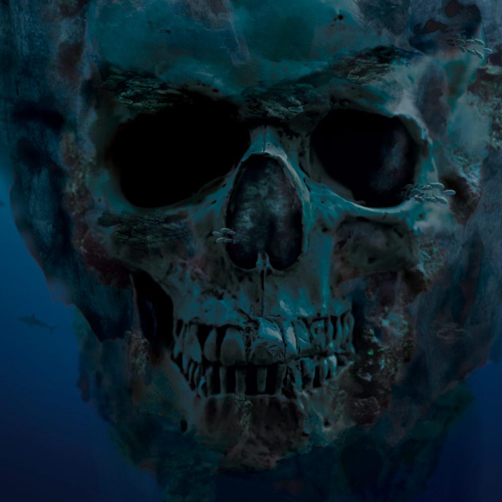 Piratestyle_Detail1.jpg