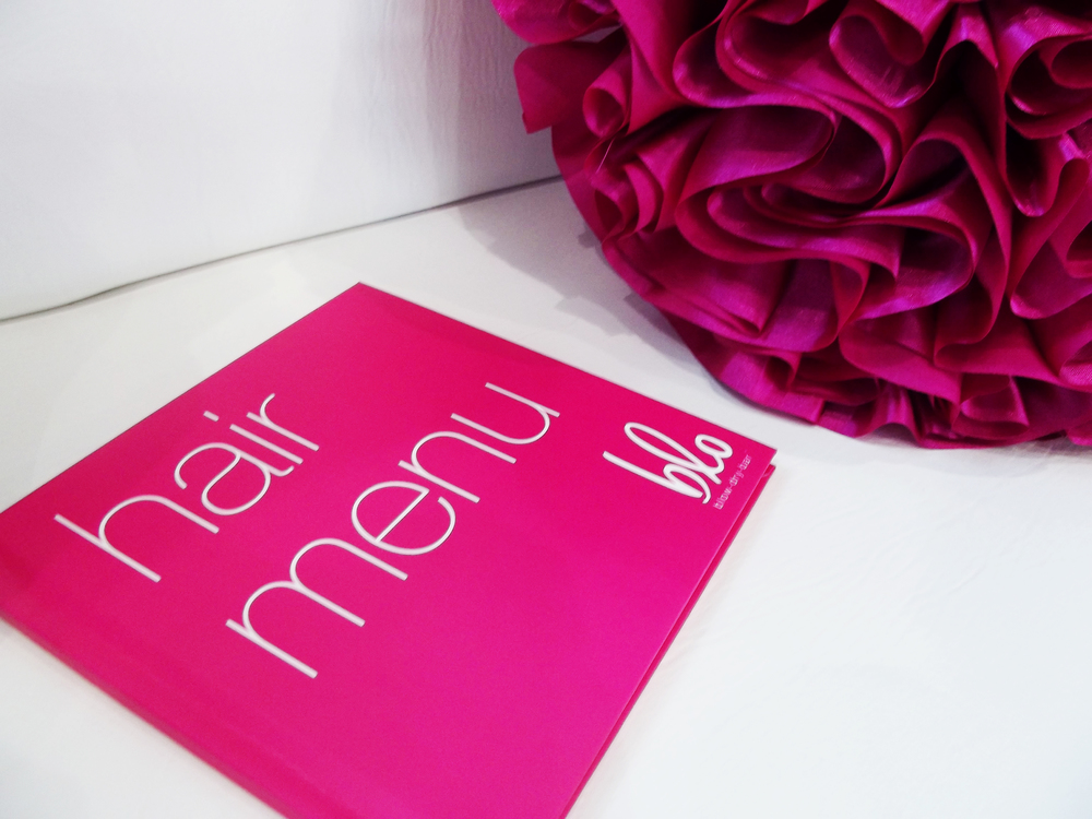 The little pink book of hairstyles known as the Blo hair menu.