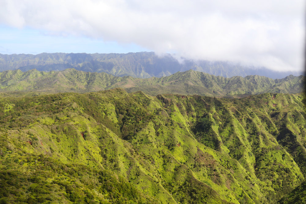 "The vibrant, green, lush mountains that meet the clouds on Kauai. Whether you're an amateur or professional photographer, this is one of the best ways to get those ""WOW"" photos."