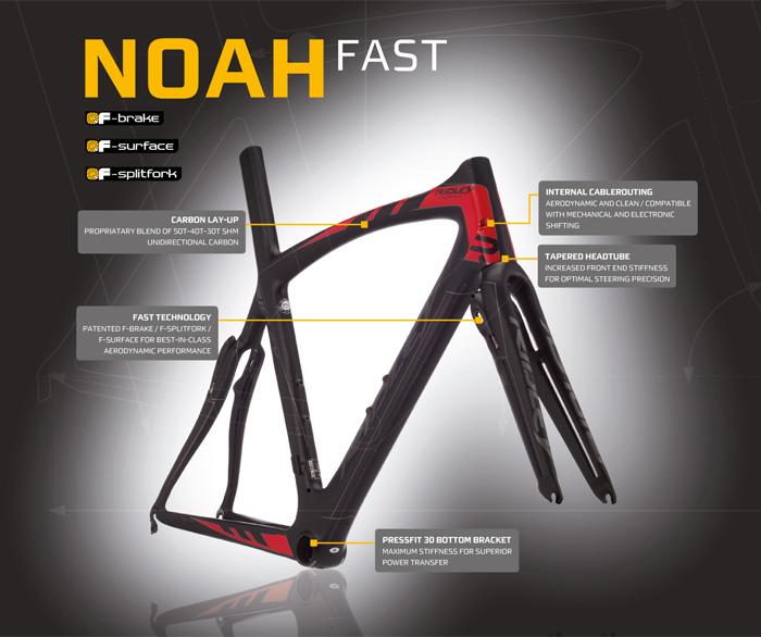 noah_fast.jpg