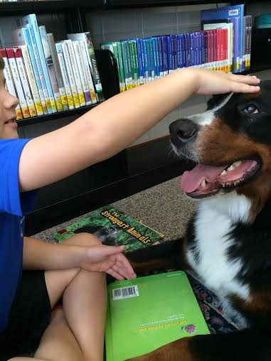 Seen: Church and Eli having a moment in between books. Church likes to put his head on Eli's book and gets lots of love. .