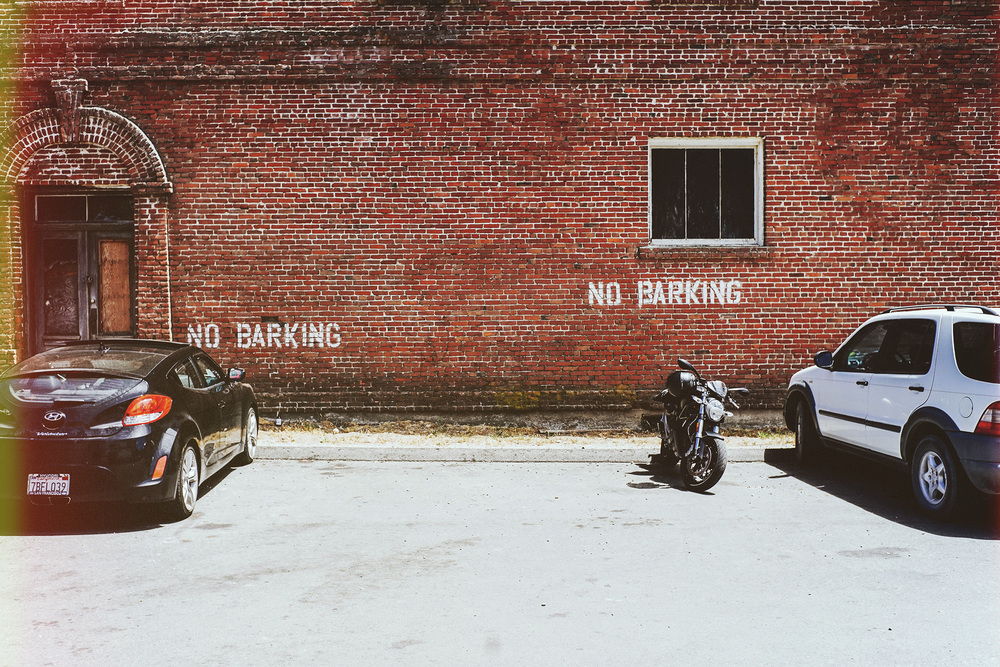 nobarking