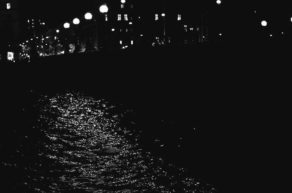 street_photography_copenhagen_night-5.jpg