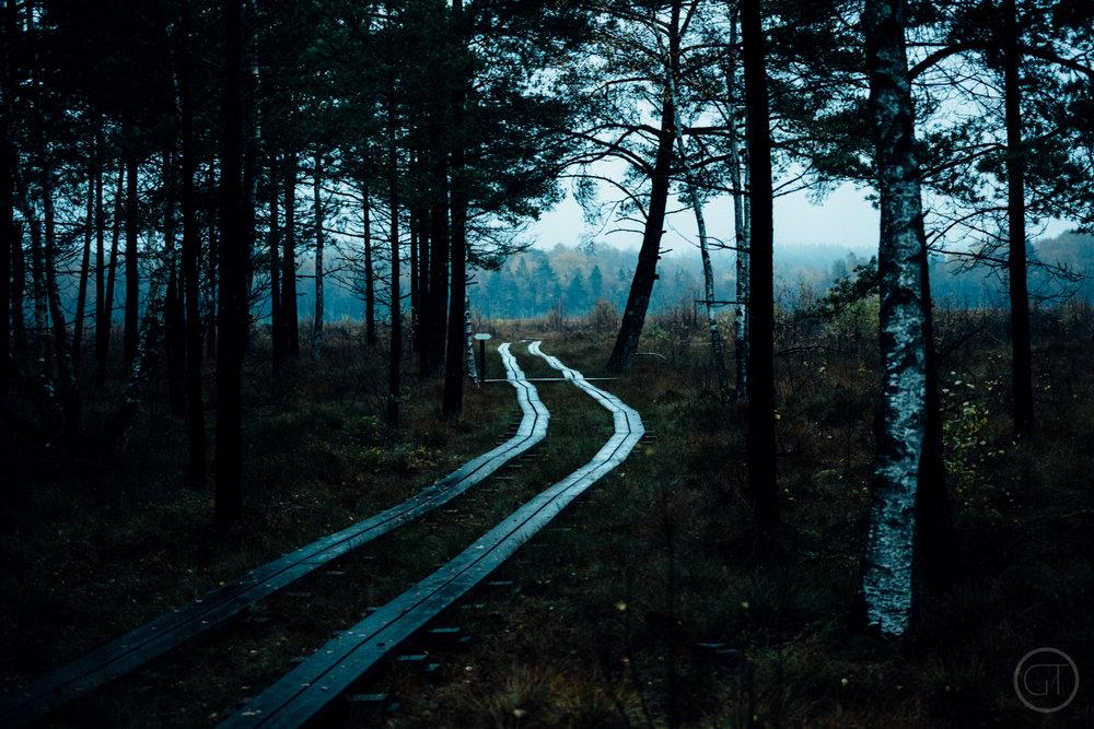 GUSTAV-THUESEN-adventure-denmark-photographer-nature-landscape-KØBENHAVN-FOTOGRAF-lifestyle-2.jpg