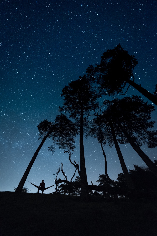 gustav-thuesen-lifestyle-outdoor-nature-videographer-københavn-fotograf-photographer-2.jpg