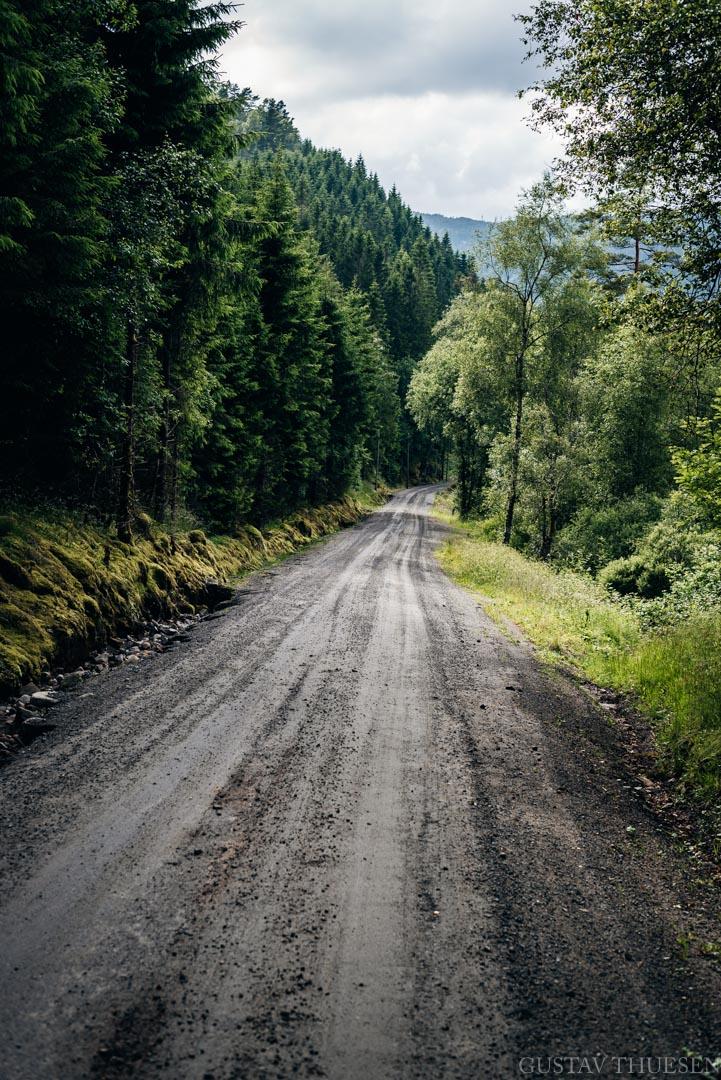 GUSTAV-THUESEN-2017-BERGEN-BIKEPACKING-NORWAY-1.jpg