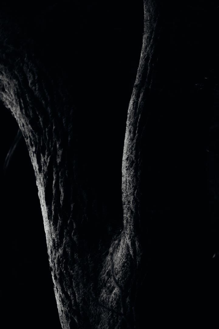 GUSTAV-THUESEN-PHOTOGRAPHER-3.jpg