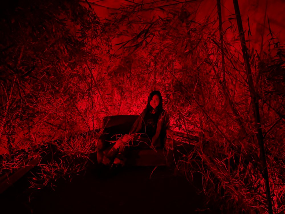 HARC Red Forrest - In collaboration with the HARC Collective, Pareto Retail Labs designed an indoor red light bamboo forest. The installation increased dwell time and generated dozens of social media posts.
