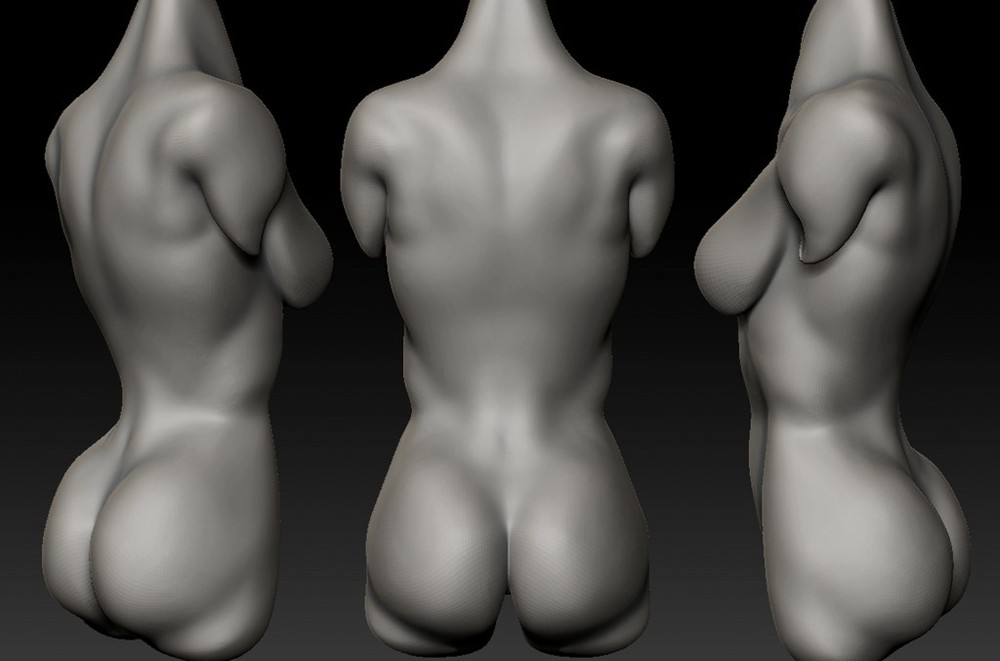 Fancy Woman Back Anatomy Embellishment Anatomy And Physiology