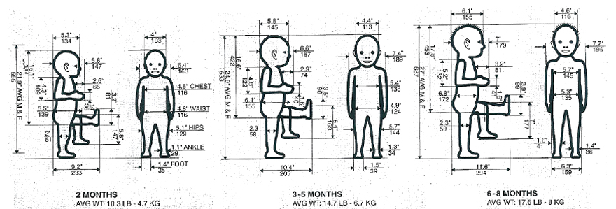 ergonomy.jpg