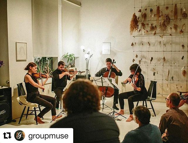 Great shot from our most recent @groupmuse 📸@erinpearlmanphotog #dumbo #puckquartet #corefuljohnson
