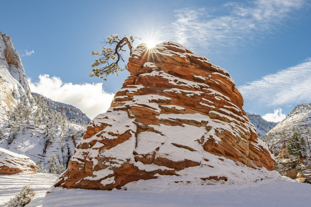 Zion winter photo