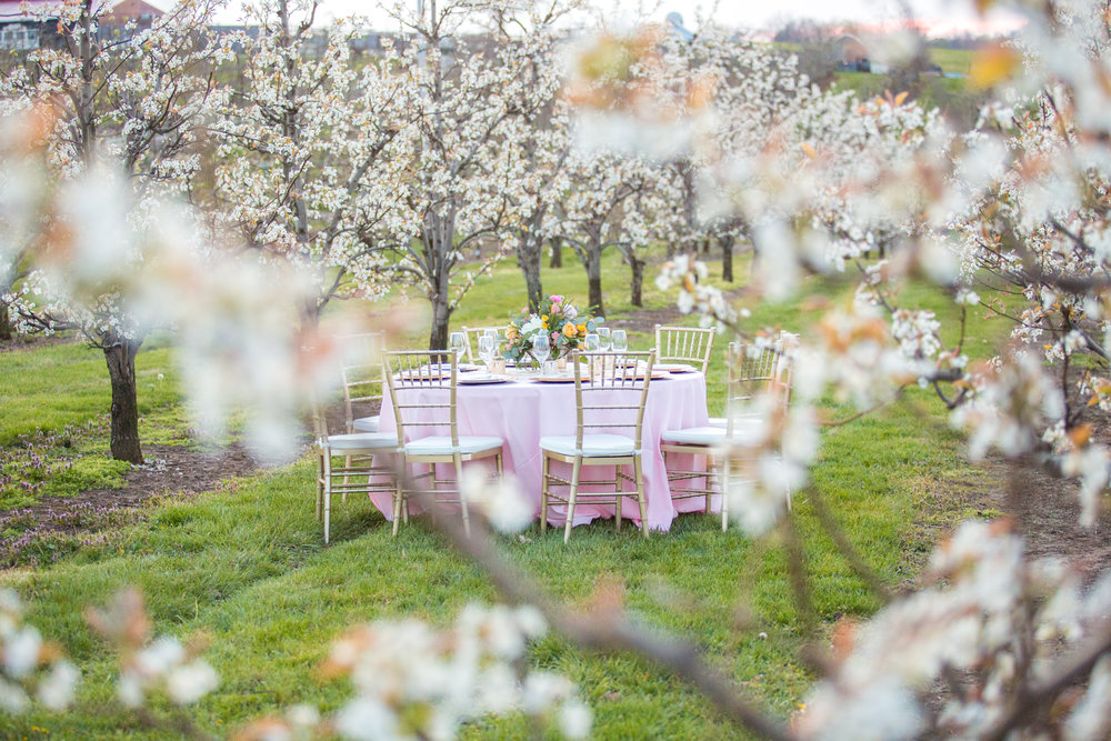 Styled Shoot at Evan's Orchard 74.jpg