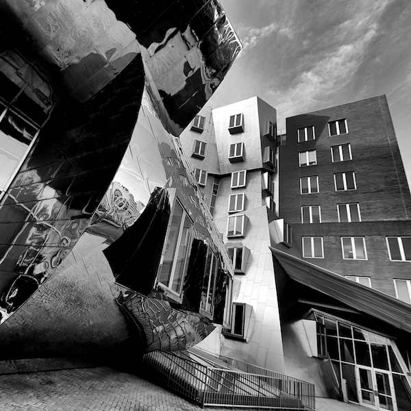 Frank Gehry Impressions #6