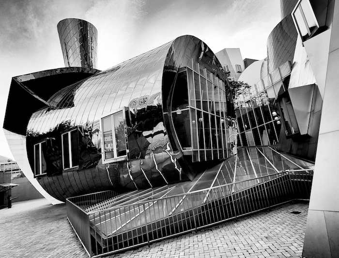 Frank Gehry Impressions #8