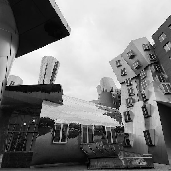 Frank Gehry Impressions #9