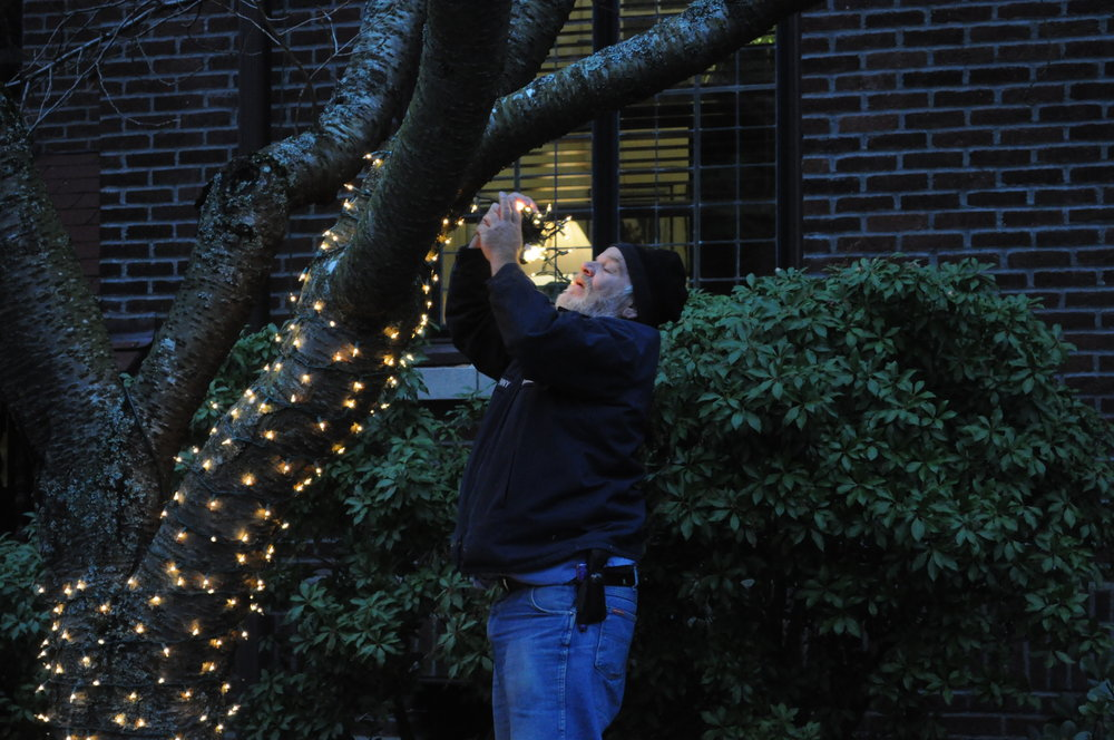 Crista_-_putting_up_Christmas_lights_01.jpg