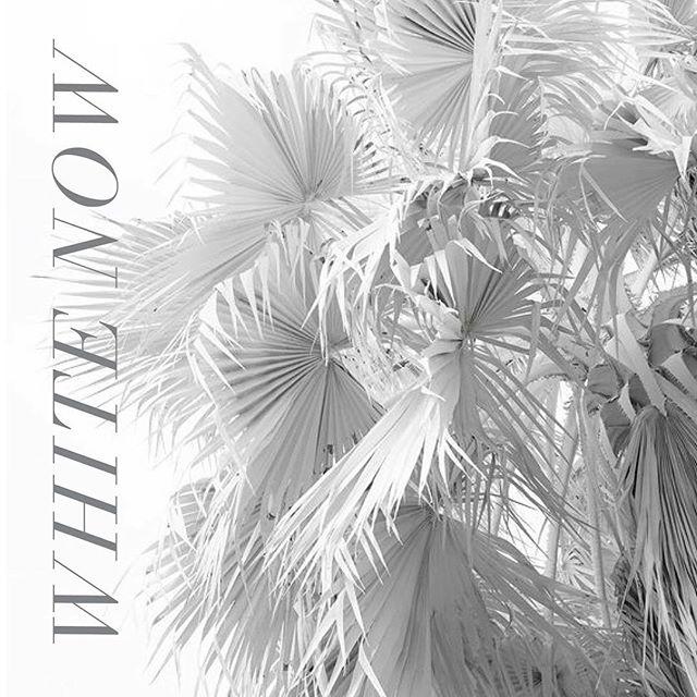 White sands, white clouds, the White Album… it's what we're feeling white now.  #whitenow  #whiteonwhite  #kinsleyshop #thekinsleynewandnow