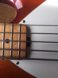 5 String 3.JPG