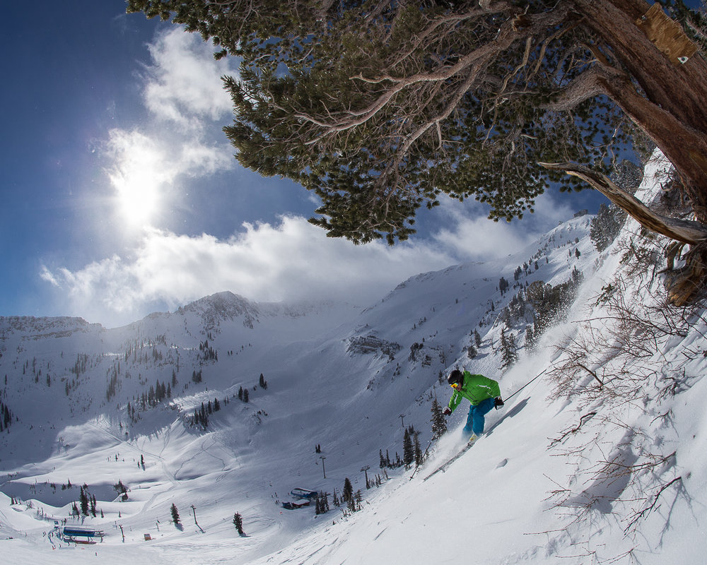 SKI CITY: BOOK OF UTAH - Skiing Utah is an experience for skiing purists and ski urbanists.By Gordie Bowles. Photography by Paul Morrison.