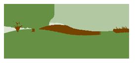 VOF-Logo-RGB.png