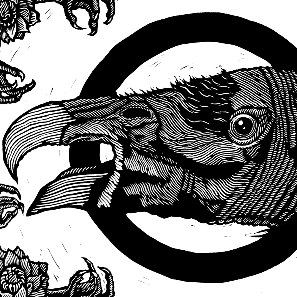 Extincion02.jpg