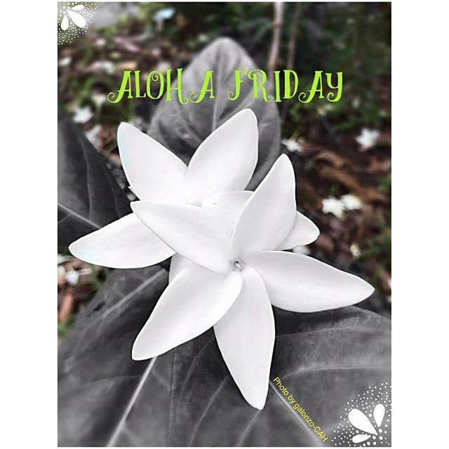 Aloha Friday!  #CAH #luckywelivehawaii #concierge #conciergelife #livingaloha #conciergehawaii #Hawaiianhospitality