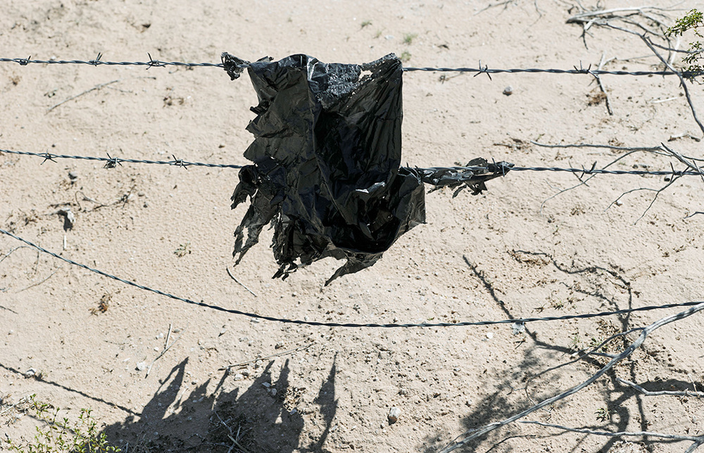 Wind-tattered bag caught on barbed wire, 2013