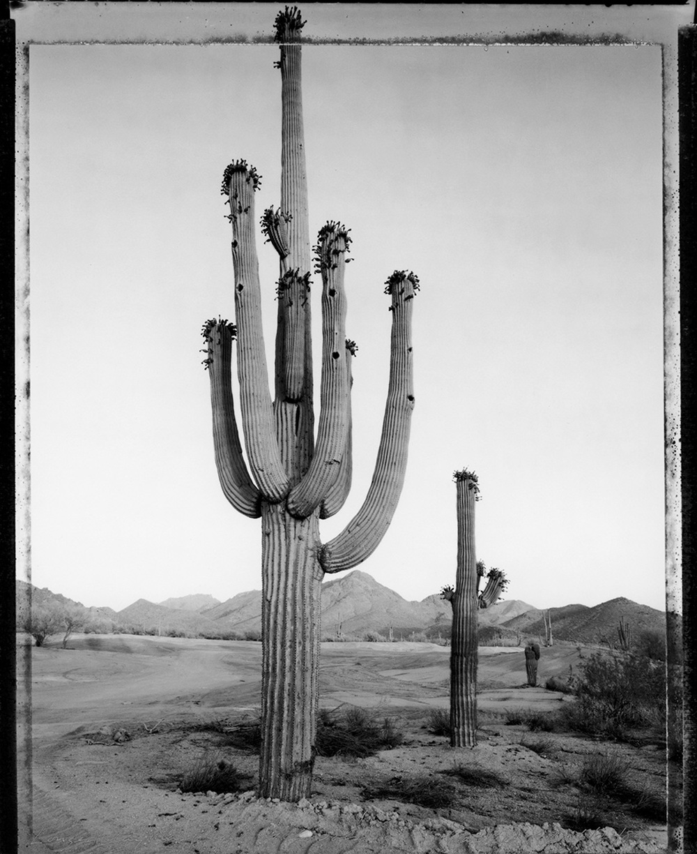 Longest day: first light of the solstice, Carefree, Arizona, 1984