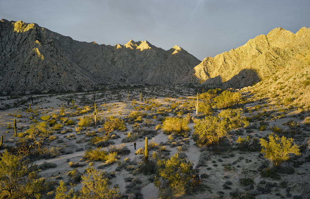 Sunrise near Raven Butte, Gila Mountains, 2014