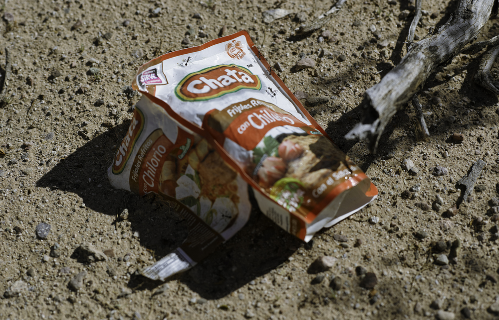 Portable meal bag discarded by traveler heading north, 2014