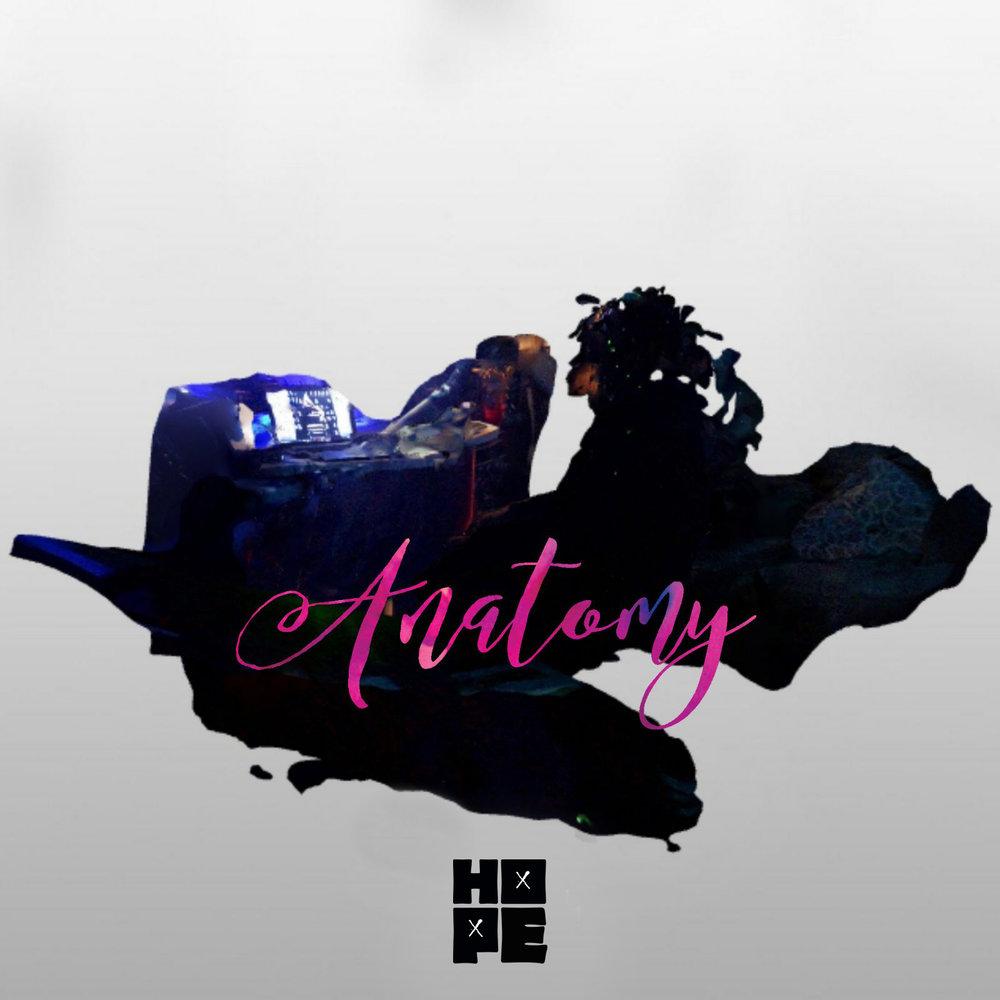 anatomy graphic art-no crown (2).jpg