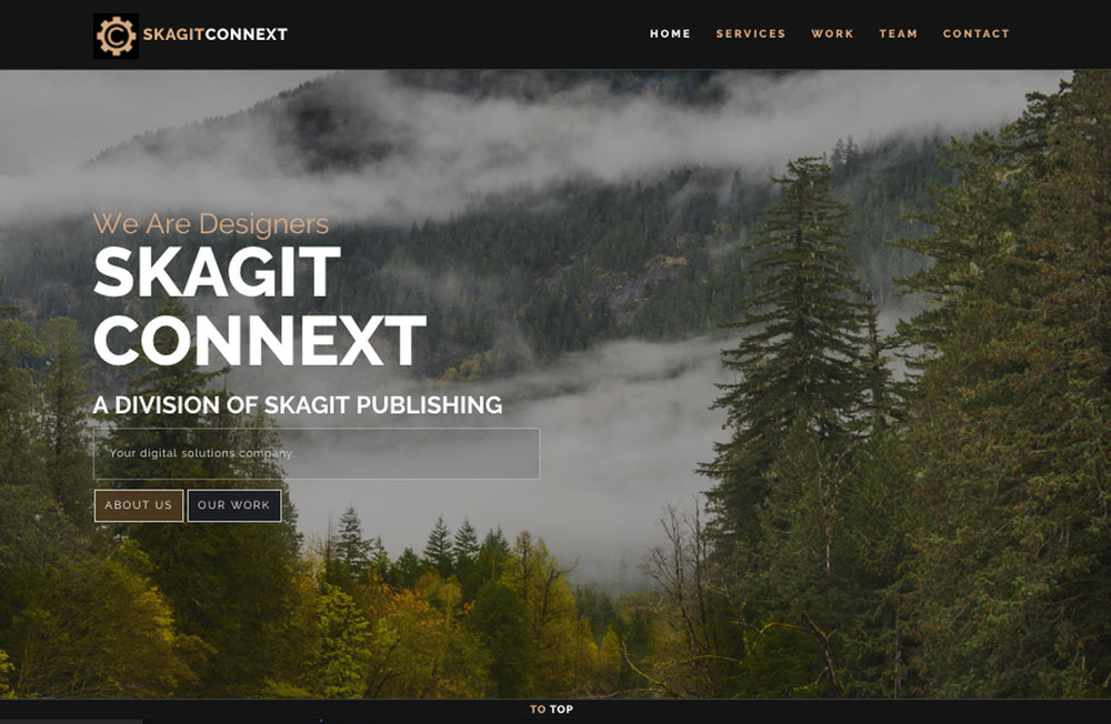 Screenshot of the SkagitConnext.com website.