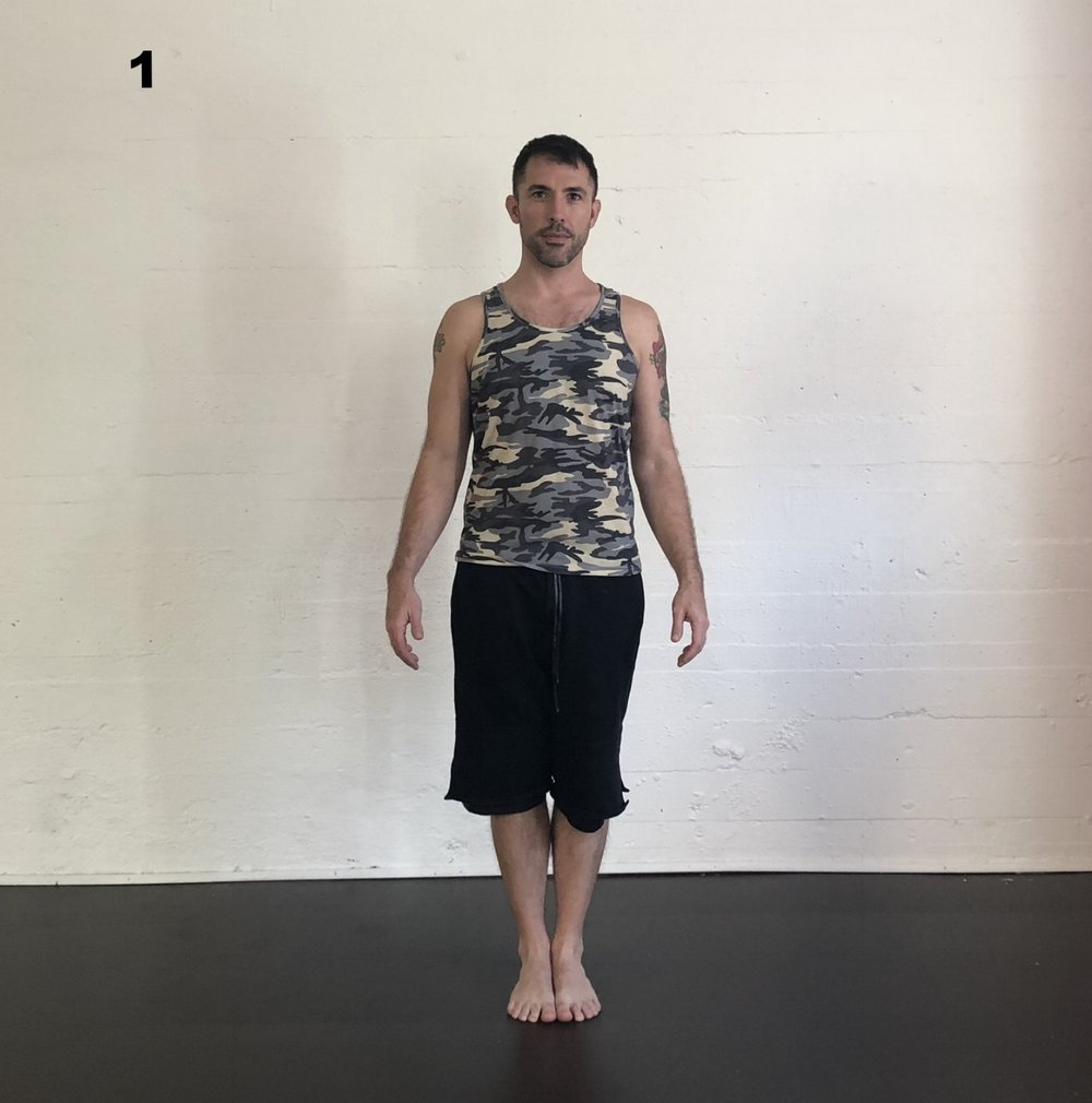 Tadasana - Stand with the feet even, spine long and palms slightly forward.  Feel your feet, all corners, focus on the evening out your breath.  Can you feel your plumb line?