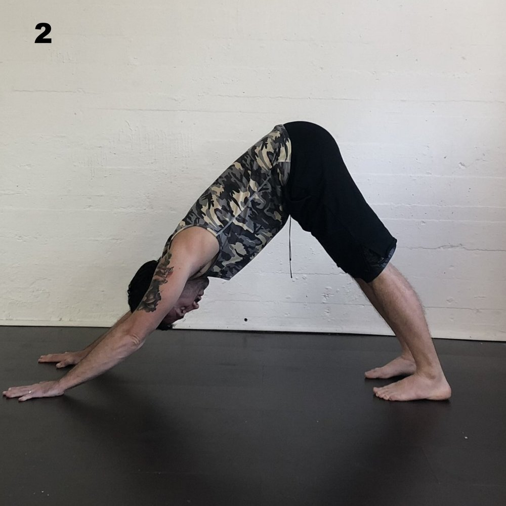 Downward Facing Dog - Begin on hands and knees, spread your finger and lift your hips skyward.  Keep your hands shoulder width. and your feet hips distance wide.  Lift your hips and relax your head.  Try to feel your hips as the highest point of the pose. Down dog is a hard pose to hold, keep focusing inward.
